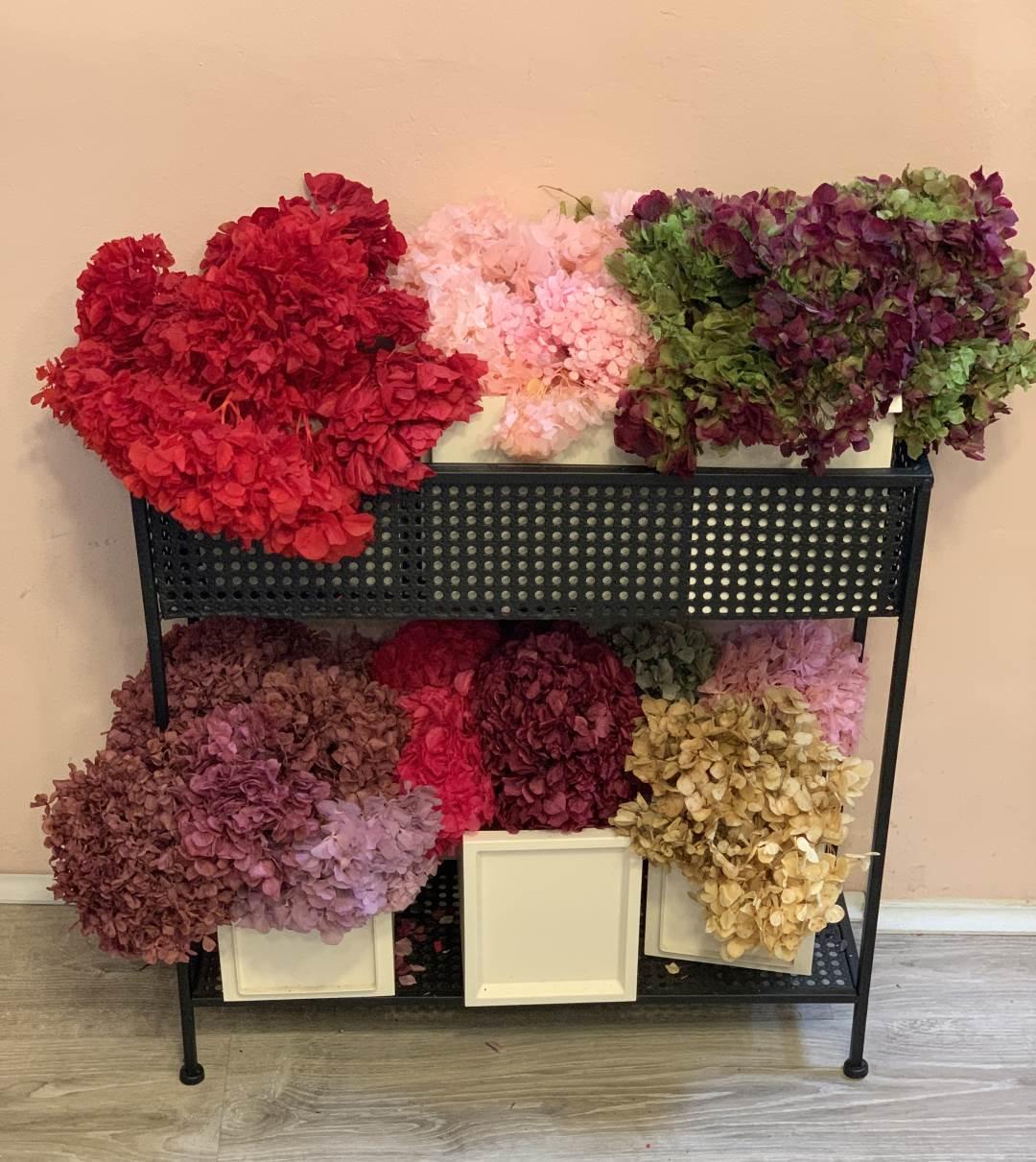 Magdalena sala flores