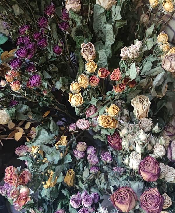 flores preservadas magdalena sala